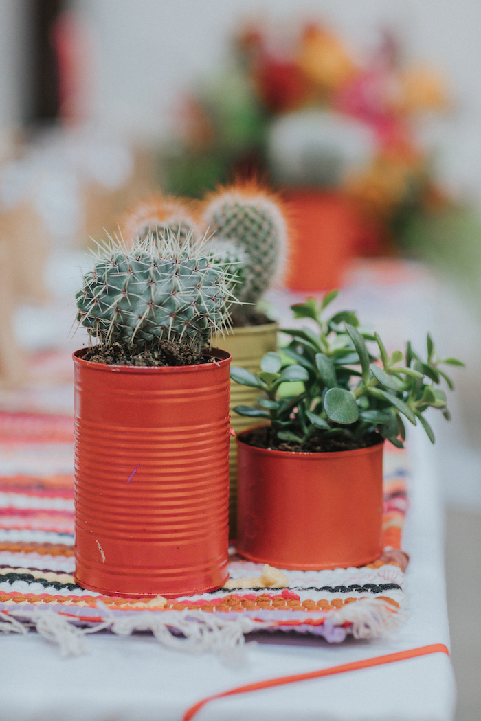 cacti as wedding table decoration