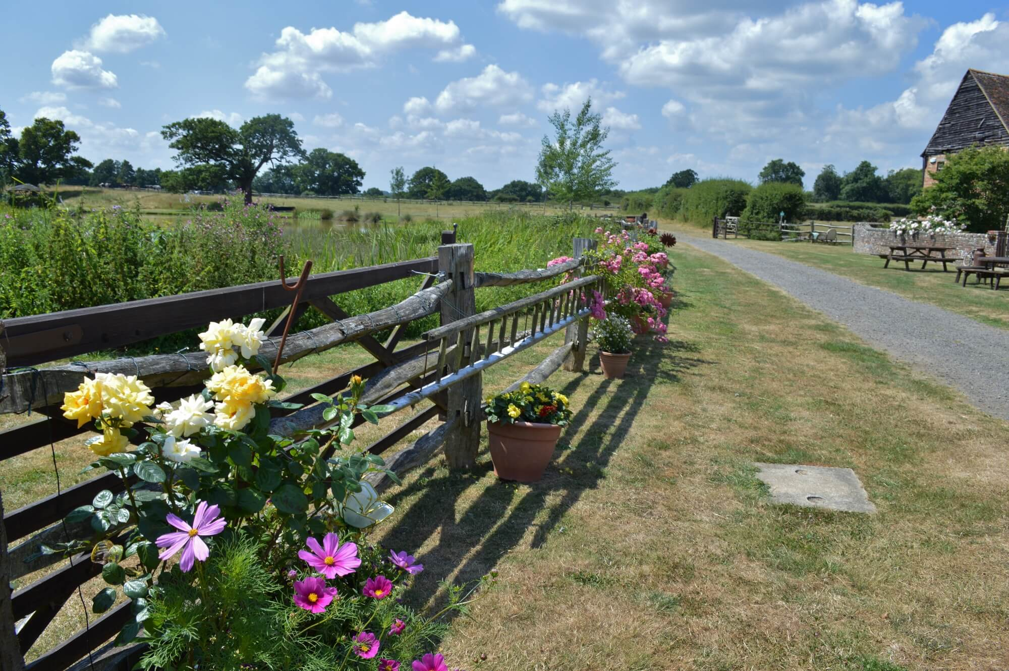 roses and cosmos at the house meadow wedding venue in kent